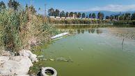 """واگذاریهای عجیب اراضی ساحلی استان گلستان/ چرا بنادر """"گز و ترکمن"""" ۲۰ و ۵۰ سال به برخی دستگاهها واگذار شدهاند؟"""