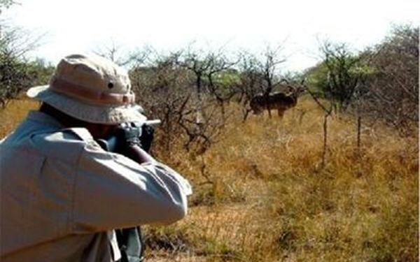 ممنوعیت شکار به مدت ۵ سال در گلستان