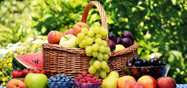 معجون سلامتی بدن با مصرف این میوه ها