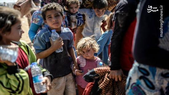 اگر حکومت ایران نبود چه فاجعهای در نجف و کربلا رخ میداد؟