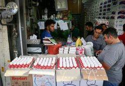 قیمت روز تخم مرغ در بازار (۹۹/۰۸/۰۶) + جدول