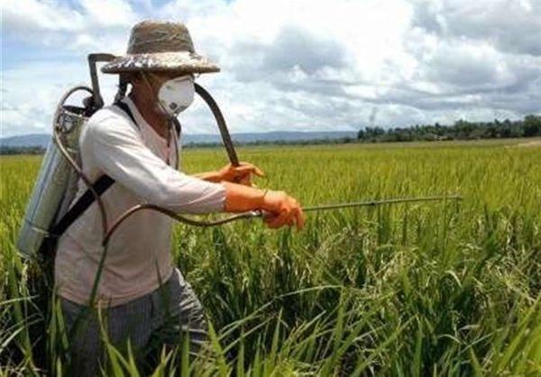 هشدارهای هواشناسی به کشاورزان تا ۱۹ دیماه/فعلا سمپاشی نکنید