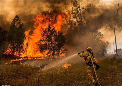 آتش سوزی بار دیگر جنگلهای کلاله را در کام خود گرفت