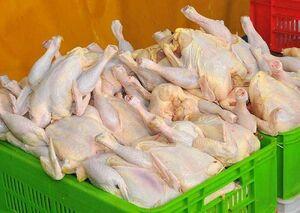 قیمت مرغ و گوشت در ریل کاهش قیمت