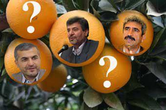 مردود شدن سازمان جهاد کشاورزی گلستان در توزیع میوه شب عید