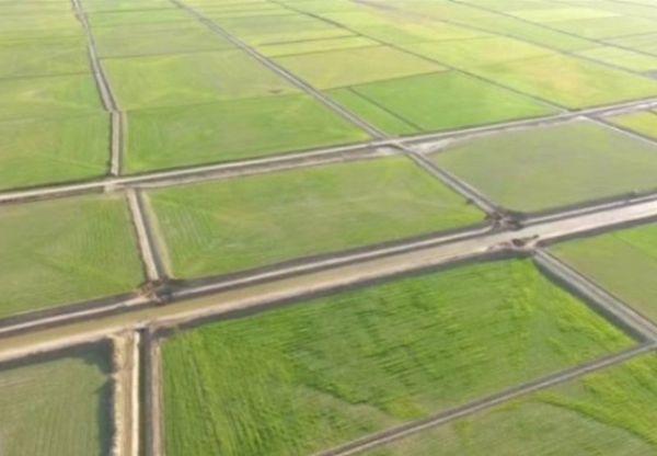 کشاورزان مرزنشین گلستان به زهکشی زمین ها امید بسته اند