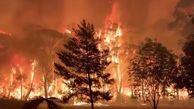 فیلم/ استرالیا همچنان در محاصره آتش