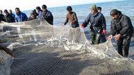 رشد ۱۸ درصدی صید ماهیان استخوانی از آب های گلستان
