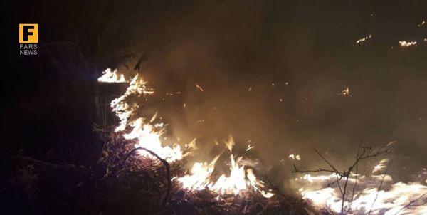 ۵۸۴ هکتار از جنگلهای گلستان در آتش سوخت/ ۳۹۷ فقره حریق در در منابع طبیعی گلستان