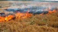 60 هکتار گندم گلستان در آتش
