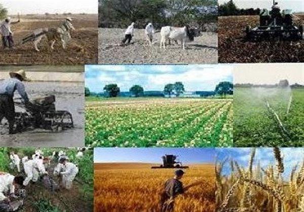 ۲ هزار میلیارد تومان تسهیلات برای ایجاد اشتغال روستایی اختصاص یافت