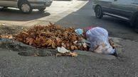 رها کردن ماسکهای آلوده در معابر شهرها/شهرداری گرگان مخازن پسماند ویژه ماسک و دستمال نصب کرد