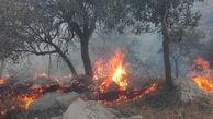 اطفاء کامل آتش سوزی جنگلهای بخش لوه گالیکش