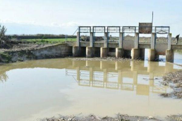 ۱۰۲ مزرعه پرورش ماهی در سیل گلستان ۱۰۰ درصد تخریب شد