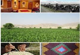 سهم 320 میلیارد تومانی گلستان از اعتبارات اشتغال روستایی