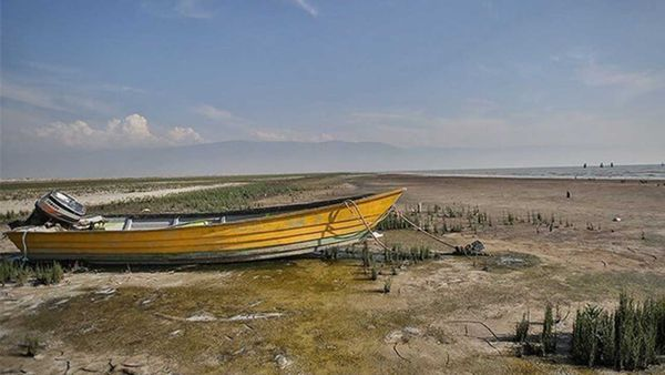 مهمترین راه احیای خلیج گرگان چیست؟