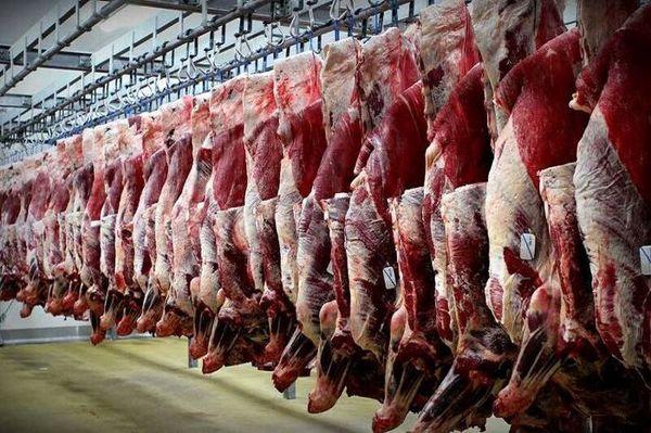 طرح جدید گوشت را ارزان می کند؟