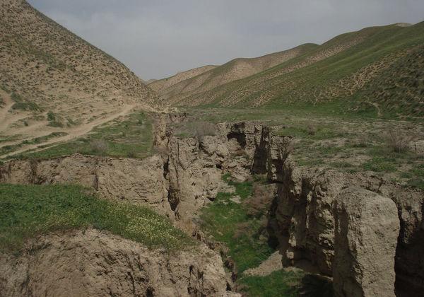 ۱۹ درصد اراضی کشاورزی کلاله مستعد فرسایش شدید خاک است