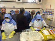 بهره برداری از کارخانه فرآوری میگو و ماهی در بندر ترکمن