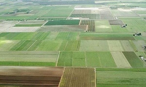 طرح کاداستر در یک میلیون هکتار از اراضی ملی گلستان اجرا شد