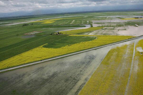 خسارت ۳۹۰ میلیارد تومانی سیل به بخش کشاورزی گمیشان