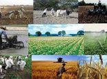 بیش از ۱۵۰ میلیارد تومان تسهیلات اشتغال روستایی در استان گلستان پرداخت شد