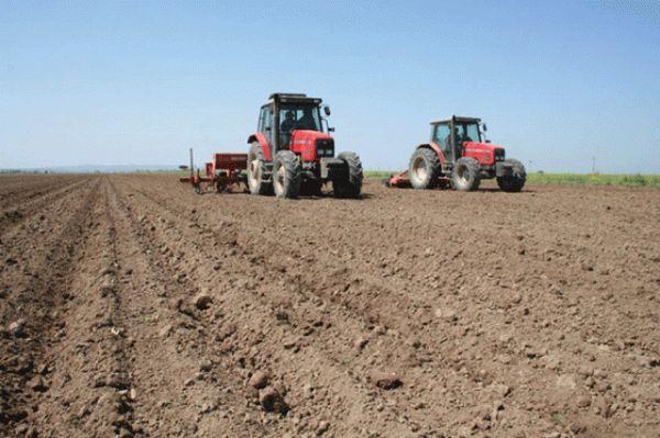 کاهش 50 درصدی سهمیه سوخت ادوات کشاورزی فاقد پلاک در استان گلستان