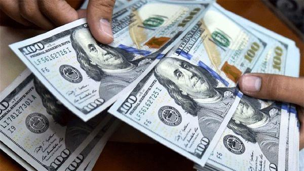 صادرکنندگان گلستانی نسبت به رفع تعهدات ارزی خود اقدام کنند