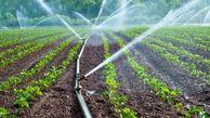 ۸۰ هزار هکتار از اراضی کشاورزی گلستان به آبیاری نوین مجهز هستند