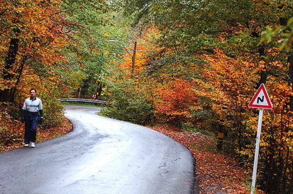 تبدیل جاده داخل پارک جنگلی النگدره به پیاده راه