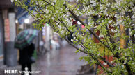 هفته بارانی در انتظار گلستانی ها