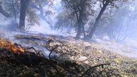 آمادهباش جنگلبانان گلستانی برای خاموشکردن آتش