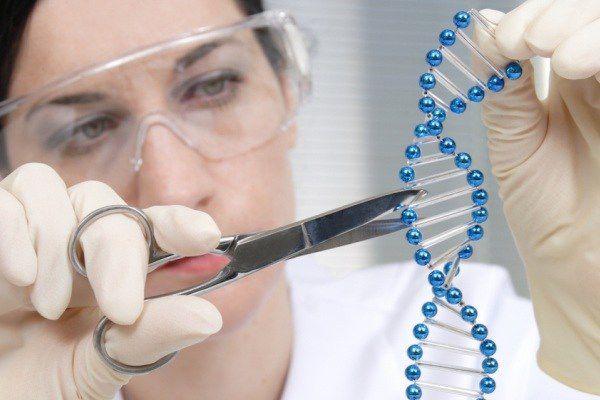 پذیرش دانشجوی ژنتیک دردانشگاه علوم پزشکی گلستان شروع شد