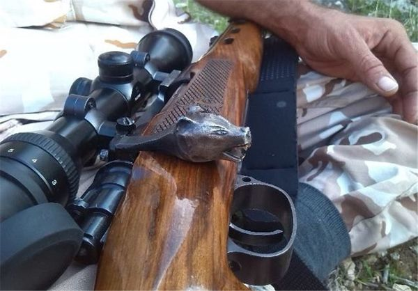 ۲۱ صیاد غیرمجاز پرندگان در مناطق مرزی گنبدکاووس دستگیر شدند