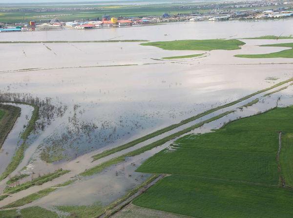 320 میلیارد تومان کمک بلاعوض جبران خسارت سیل بخش کشاورزی گلستان مصوب شده است