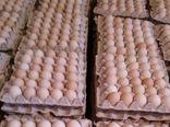 نرخ هر شانه تخم مرغ ۳۰ عددی ۲۰ هزار تومان شد