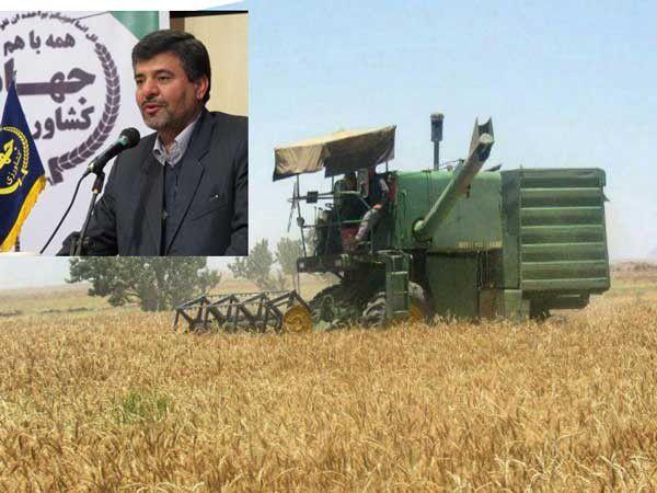 12درصد گندم کشور در گلستان تولید میشود / پیش بینی تولید 1 میلیون و 200 هزار تن گندم در گلستان