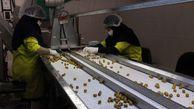 اقتصادیشدن کشاورزی گلستان نیازمند راهاندازی صنایع تبدیلی