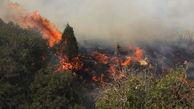 وزش شدید باد، مهار آتش پارک ملی گلستان را سخت کرد
