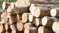 توقیف کامیونهای حمل چوب در استان گلستان با دستور دادستان