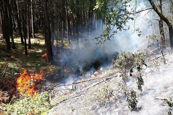آتش سوزی منطقه اورس بند به طور کامل مهار شد