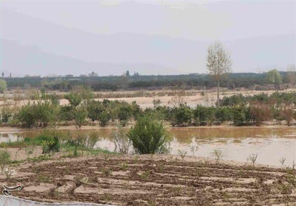 پرداخت 14 میلیارد تومان خسارت به کشاورزان آسیبدیده در استان گلستان