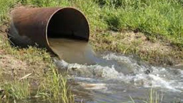 شناسایی ۱۲۰ مورد آبیاری مزارع با فاضلاب در گلستان