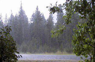 کاهش دمای هوای گلستان