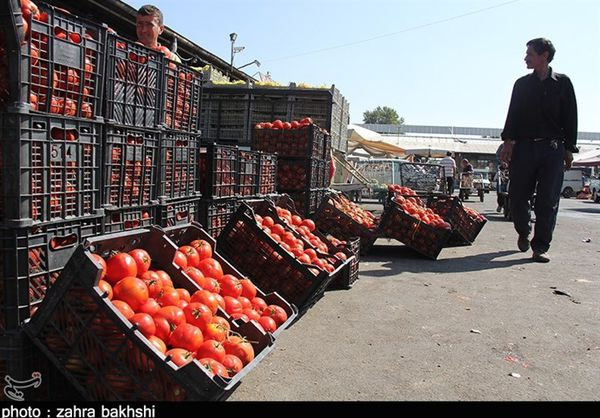 فروش گوجه فرنگی ایرانی با قیمت ۱۴ هزار تومان در پاکستان