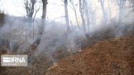 نقش قاچاق چوب، مردم و قانونشکنان در آتشسوزی جنگلهای گلستان