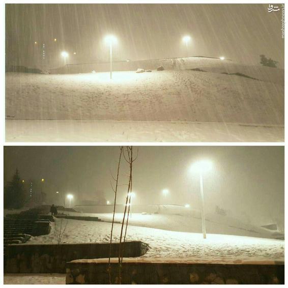 عکس/ بارش برف شب گذشته در تهران