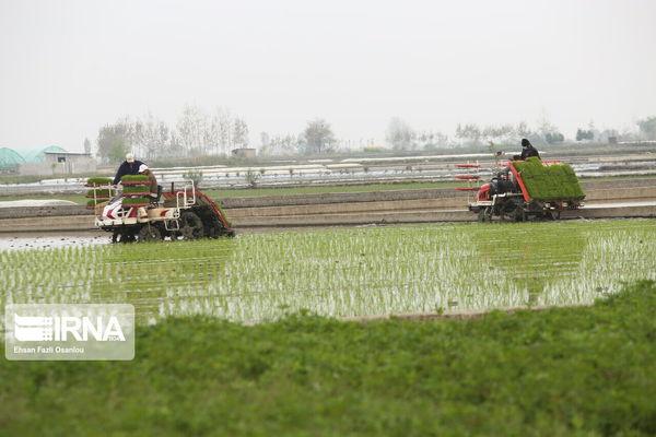 نوسازی ماشینآلات، گام بلند توسعه کشاورزی گلستان