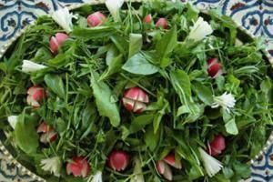 مدعی العموم به موضوع سبزیجات آلوده درگرگان ورود کرد