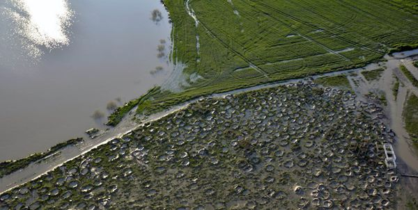 خسارت 88 میلیاردی به تاسیسات برق آققلا
